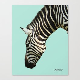Zebra by Kokatu MINT Canvas Print