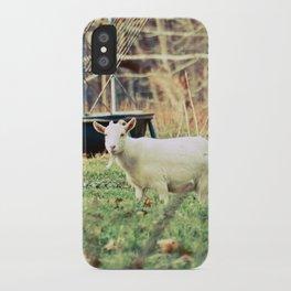 Billy's Bonny Bairn iPhone Case