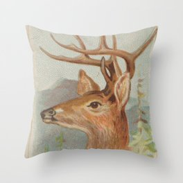 Vintage White Tail Deer Illustration (1888) Throw Pillow
