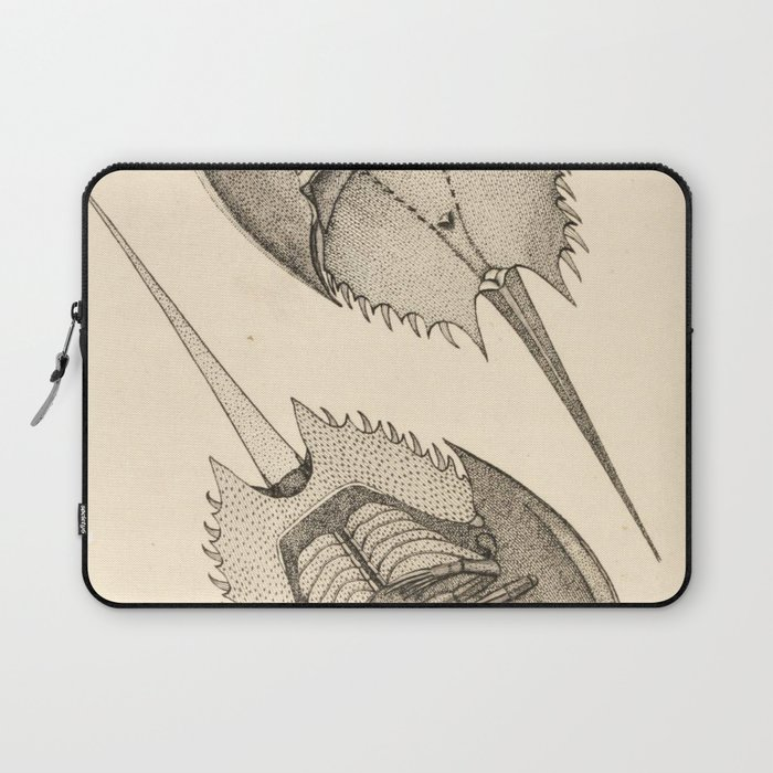 Horseshoe Crabs Laptop Sleeve