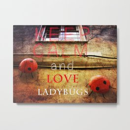 Keep Calm and love ladybugs  Metal Print