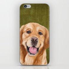 Golden Retriever iPhone & iPod Skin