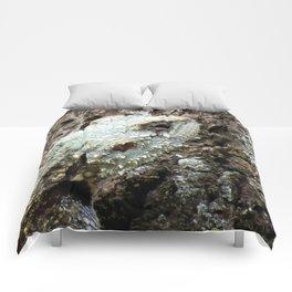 Plated Lizard Comforters