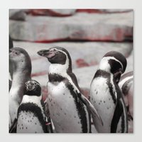 penguins Canvas Prints featuring penguins by MehrFarbeimLeben