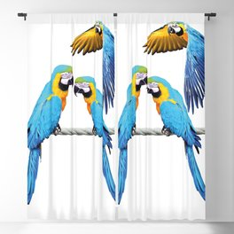 macaw Bird sitting on rope & flying Blackout Curtain