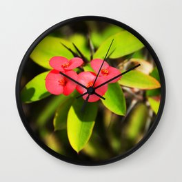 cactus flower Wall Clock