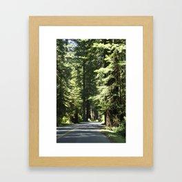 Humboldt Redwoods State Park Road Framed Art Print