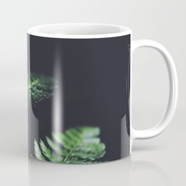 FERN - CLOSE UP - LEAVES - NATURE Coffee Mug