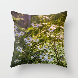 Continuous Matters Throw Pillow