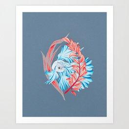 Beta Fish Art Print