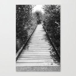 Mt. A Long Bridge Canvas Print