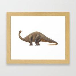 Dinosaur Apatosaurus or Brachiosaurus Framed Art Print