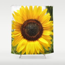 The Sun at Giverny Shower Curtain