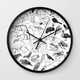 Extinct and Endangered - Australia Wall Clock