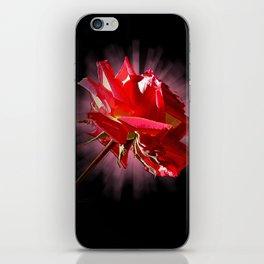 Rose 1 iPhone Skin