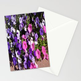 Petunia Patch Stationery Cards