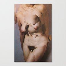 torso cut Canvas Print