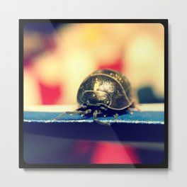 Hello there, Mr. Roly Poly. Metal Print