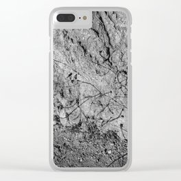 Big Sur Wild Flowers V Clear iPhone Case