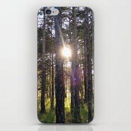 SUN FOREST iPhone Skin