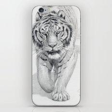 Tiger Walking C036 iPhone & iPod Skin