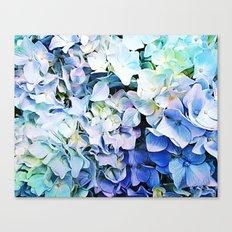 Soft Tri-Color Pastel Hydrangea Canvas Print