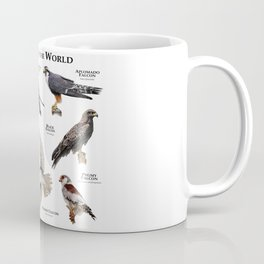 Falcons of the World Coffee Mug