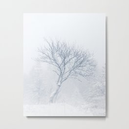 Lonely tree during snow storm in winter Metal Print