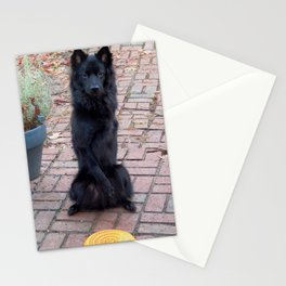 """Could you throw this for me?"" Stationery Cards"