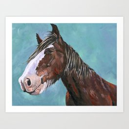 Shire horse Art Print