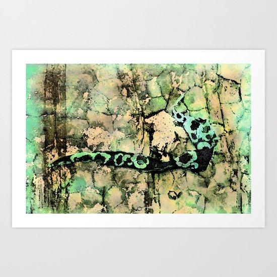 Kelp on Rocks Art Print