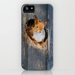 Peek-A-Boo!  iPhone Case