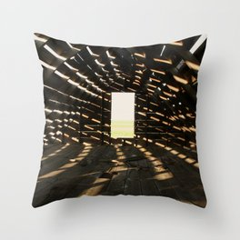 Who Needs Air Conditioning? Throw Pillow