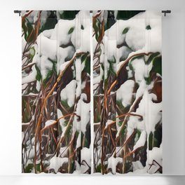 Fresh Snow On Evergreen Leaves Blackout Curtain