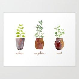 Lemon balm, marjoram and parsley Art Print