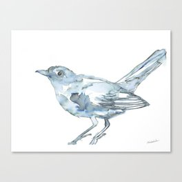 Nightingale Watercolor Sketch Canvas Print
