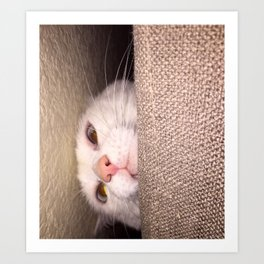 Artemis Peeking Art Print