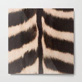 Zebra - zebra stripes -zebra skin - genuine - beautiful  Metal Print