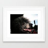 poodle Framed Art Prints featuring poodle by Richard PJ Lambert