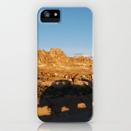 Sunset with shades and lamas iPhone Case