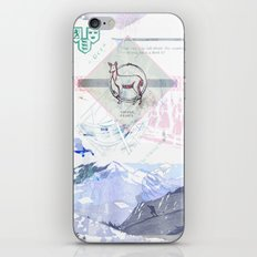Viking Relics iPhone & iPod Skin