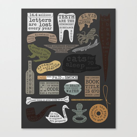 22 Facts - Useful Facts Canvas Print