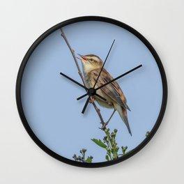 Sedge Warbler Wall Clock
