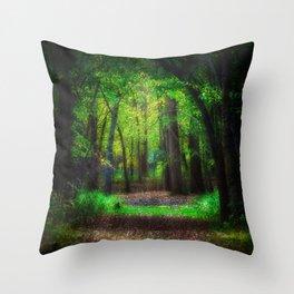 Fall Splendor 2 Throw Pillow