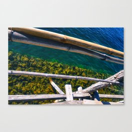 Looking In Canvas Print
