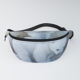 Polar Bear Mother and Cub portrait. Fanny Pack