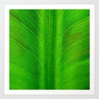 banana leaf Art Prints featuring Banana Leaf by moo2me