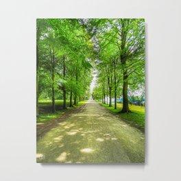 walkway. Metal Print