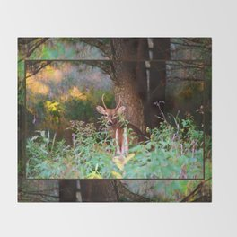 Whitetail Spike Deer Throw Blanket