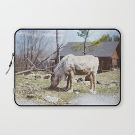 Caribou (Montreal, Canada) Laptop Sleeve